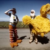 Cinemadope: A Bird in Hand, Sesame Street comes to Northampton